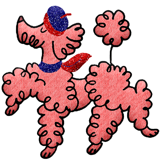Spring dog clothes worn by pink fashion poodle